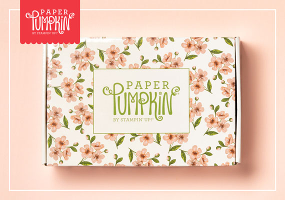 This is the specially designed box for the May 2019 Paper Pumpkin, Hugs from Shelli.